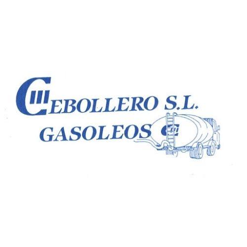 industria-y-servicios-sabinanigo-cebollero