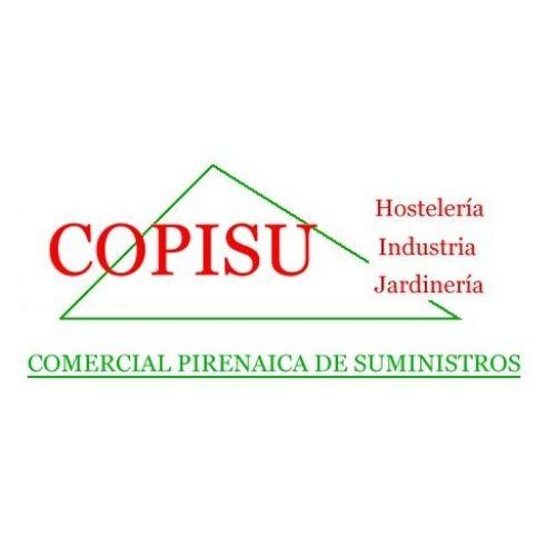 industria-y-servicios-sabinanigo-copisu