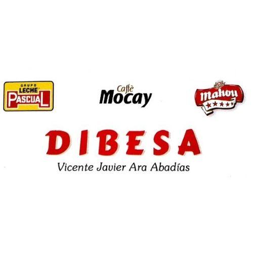 industria-y-servicios-sabinanigo-dibesa